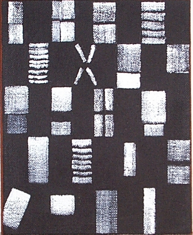 JCJ_Vanderheyden_Black_and_white_checker_1999_doek_25_x_20_cm
